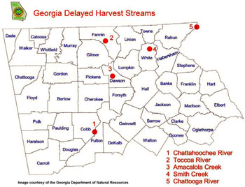 Georgia trout fishing fly fishing delayed harvest quick for Georgia trout fishing map